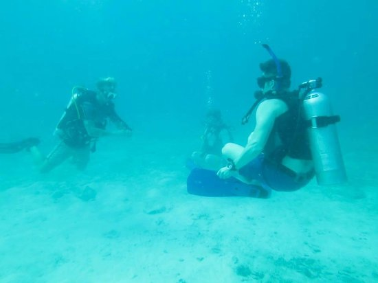 Ban's Diving Resort: PADI Open Water Certification