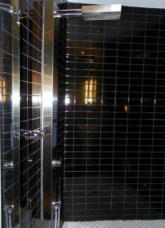 Hotel Chez Swann : Shower Stall