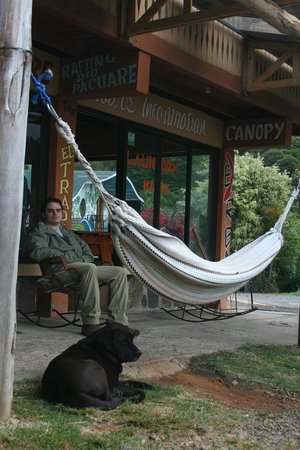 Hotel El Tucan: Comfy hammocks and resident pooch