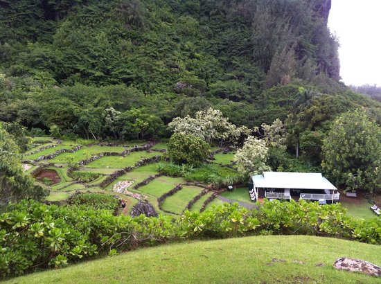 The Best Place On Kauai Is Here Picture Of Limahuli