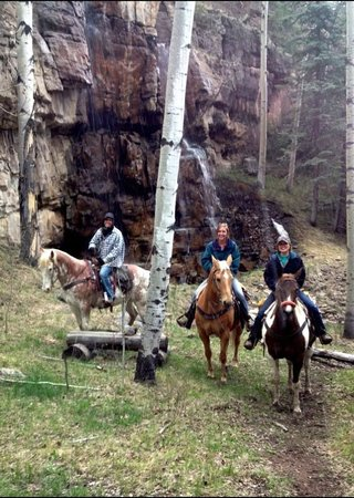 Telluride Horseback Adventures - Ride with Roudy: At a waterfall