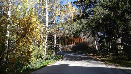 Casa Glebinias: Jardim