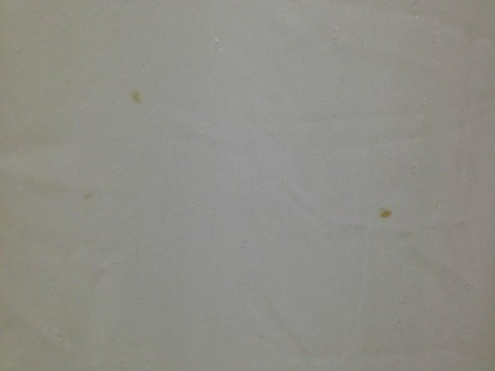Hilton Woodland Hills/Los Angeles : snot on the shower curtain