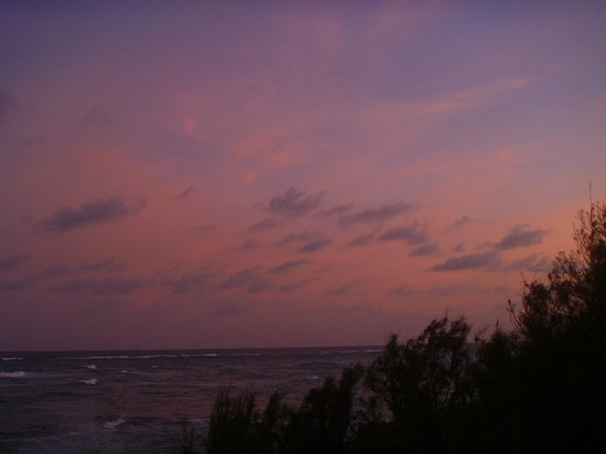 Ocean Spray Beach Apartments: Pink sky