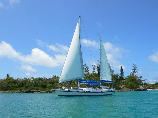 Sail Bermuda Private Charters: Private Sailing and Snorkelling Charter in Bermuda!!