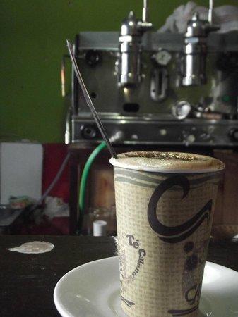 Coffee Tree: Mocca