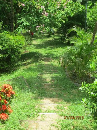 Top O' Tobago Villa & Cabanas: path to beach