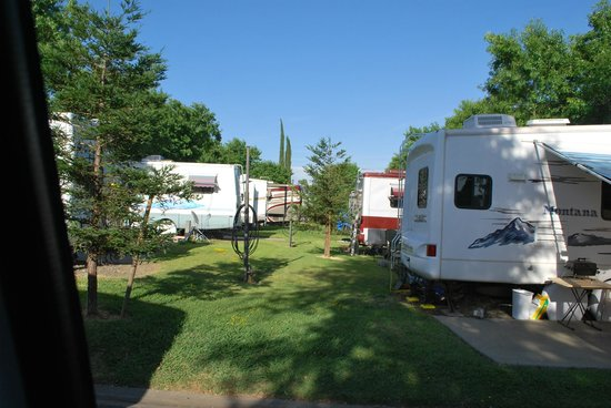 Mark J RV Park: Green space between the RVs that are backed up to each other