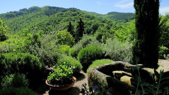 Torre di Moravola: jardines y vistas de las montañas de Umbria