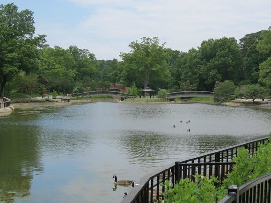Pullen Park: lake with ducks and paddleboats