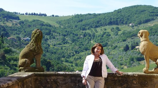 Vignamaggio: View from the top of the property