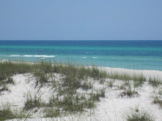 Summerwind Resort: the gulf