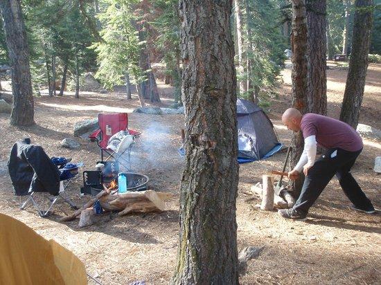 Azalea Campground: Site 65