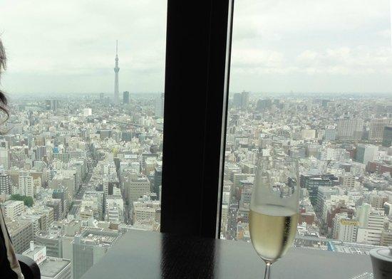 Sense: View to Sky Tree