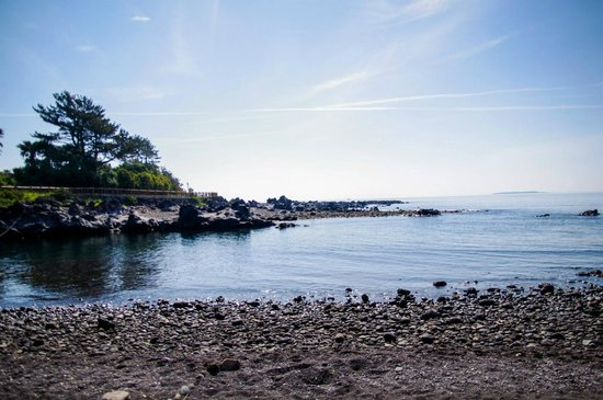 Soesokkak Estuary: Gorgeous black sand beach