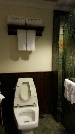 Cyberview Resort & Spa: Standing shower