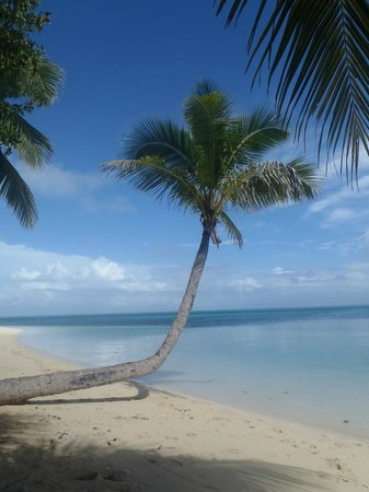 Leleuvia Island Resort: The Beach