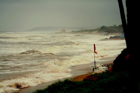 Vivanta by Taj - Holiday Village, Goa: Hotel's private beach. Was eroded due to monsoons.