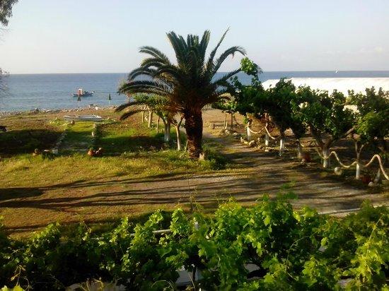 IOS Paleochora : View from Room No.2