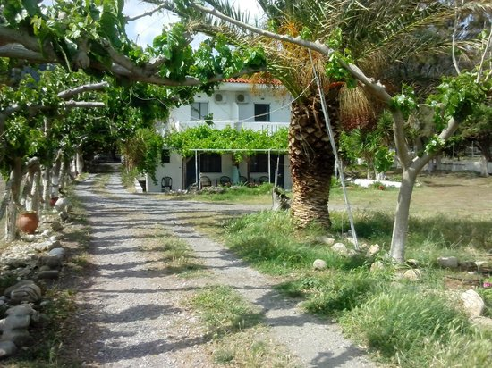 IOS Paleochora: IOS hotel from the beach