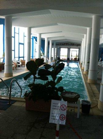 Hotel Alexander Palace: Piscina interna