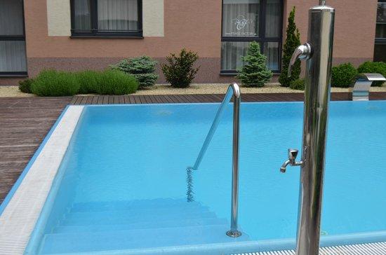 Melrose Apartments: Бассейн