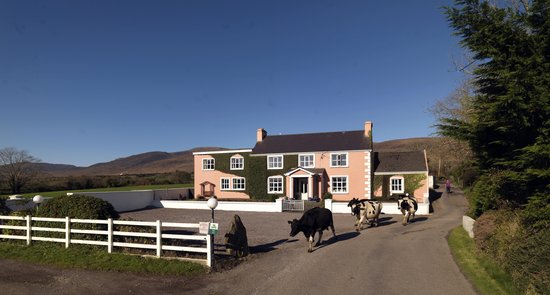 Murphy's Farmhouse