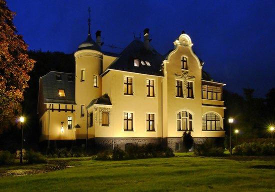 Villa Elise Park Pension: Villa Elise at night view