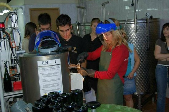Avinyonet del Penedes, Espanha: Create Your Own Cava workshop