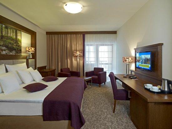 Mercure Krynica Zdroj Resort & Spa: Pokój Standard