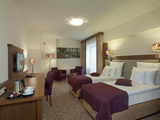 Mercure Krynica Zdroj Resort & Spa: Pokój