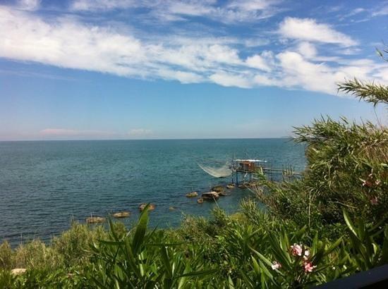 La Balena - Osteria di Mare: Inserisci didascalia