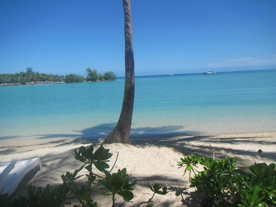 Musket Cove Island Resort: Our beach.