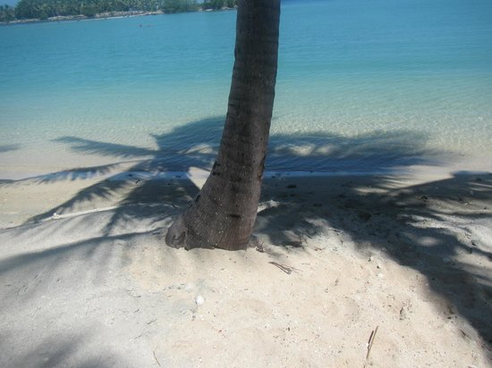 Musket Cove Island Resort: Just Beautiful!