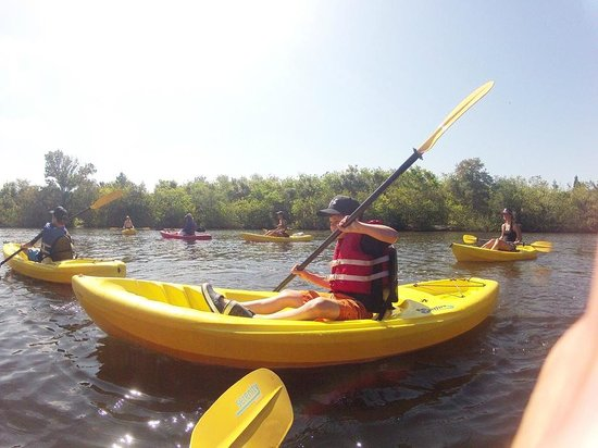 Island Time Kayaking Tours & Hire