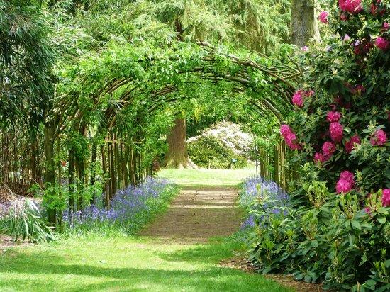 Arley Arboretum Tea Room
