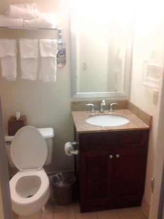 Holiday Inn Port St. Lucie: but small bathroom. That fan is very loud!