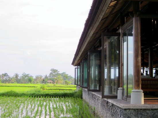The Chedi Club Tanah Gajah, Ubud, Bali – a GHM hotel: The hotel restaurant in the rice paddies