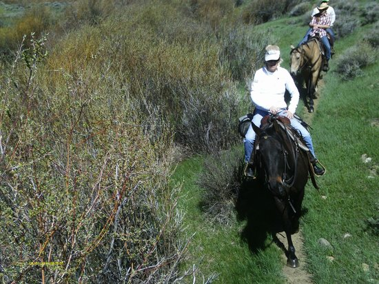 C Lazy U Ranch: One of our trailrides.