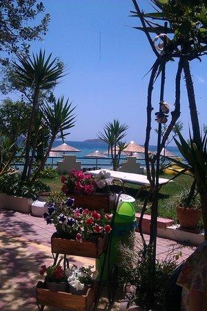 Swell Beach Bar: Paradise View