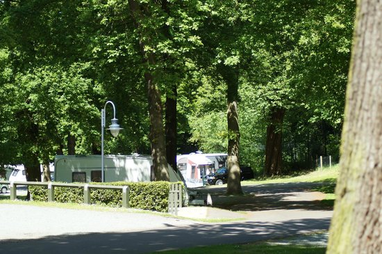 Abbey Wood Caravan Club Site