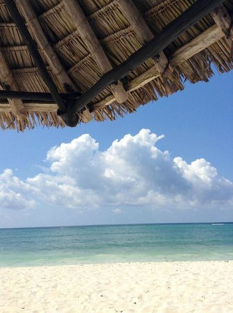 Diani Reef Beach Resort & Spa: The Beach Umbrella are devine
