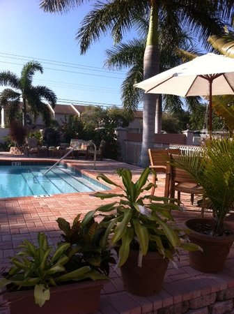 Hibiscus Suites - Sarasota / Siesta Key : Pool