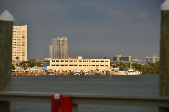 East Shore Resort : View from the pier of Clearwater Marine Aquarium - Winter's home