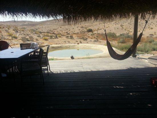 The Desert Olive Farm: siting pool and porch