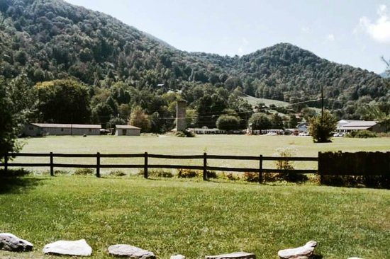 Creekwood Village Resort : View from our cabin