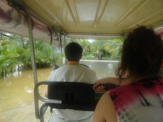 El Dorado Royale, by Karisma: Taking the golf cart on the walking paths