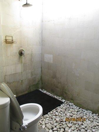 The Khayangan Dreams Villas : Outdoor shower