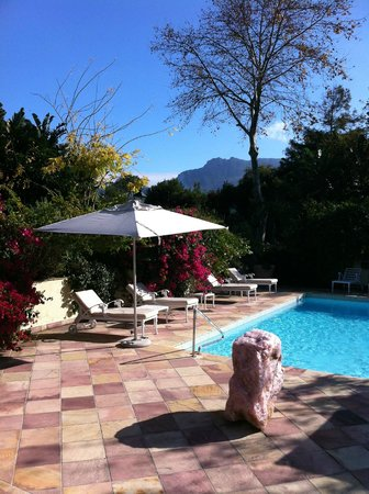The Last Word Constantia: Beautiful garden & pool