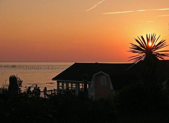 صن ست بيتش ريزورت: Sunset Grille